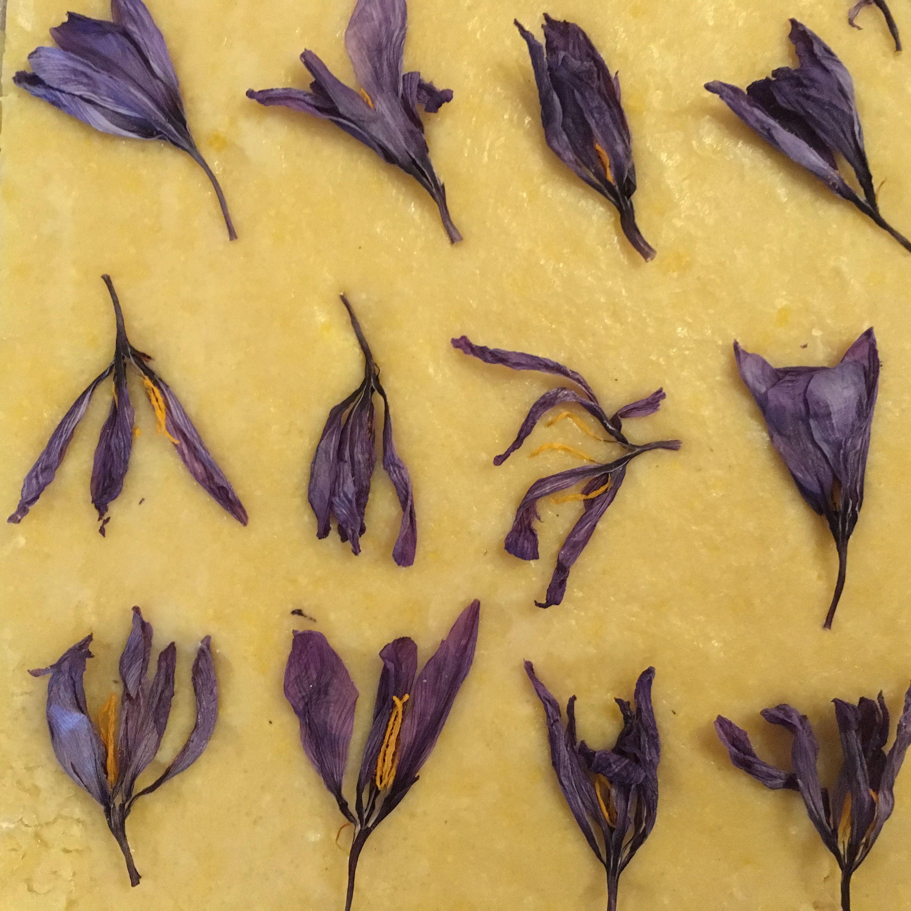 fiori essiccati
